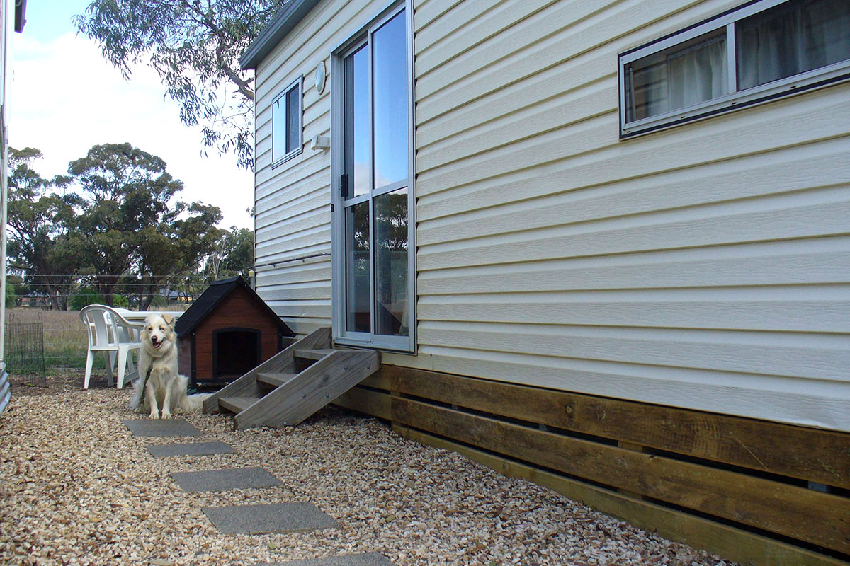 The dog friendly Budget cabin is a place to stay for you and your 4 legged family member.